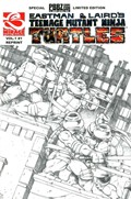 TEENAGE MUTANT NINJA TURTLES #1-PBBZ